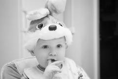Μωρό babbit Στοκ φωτογραφία με δικαίωμα ελεύθερης χρήσης