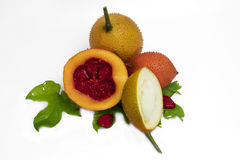 Μωρό jackfruit Στοκ Εικόνες