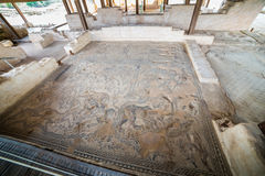 Μωσαϊκό του Νείλου επί του archeological τόπου Tzipori Στοκ Εικόνες