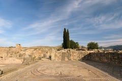 Μωσαϊκό Volubilis, Μαρόκο Στοκ φωτογραφία με δικαίωμα ελεύθερης χρήσης