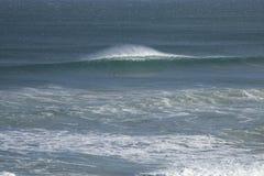 Μόνα κουπιά surfer στο κύμα του Στοκ Εικόνες