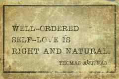 Μόνη αγάπη Aquinas Στοκ φωτογραφία με δικαίωμα ελεύθερης χρήσης