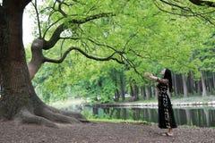 Μόνη γυναίκα κάτω από ένα μεγάλο δέντρο ανθών Απόλαυση της φύσης στοκ εικόνες