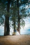 Μόνιμο αγκάλιασμα νυφών και νεόνυμφων στο υπόβαθρο των δέντρων Στοκ φωτογραφία με δικαίωμα ελεύθερης χρήσης