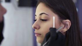Μόνιμο makeup Η όμορφη νέα γυναίκα παίρνει τη διαδικασία διορθώσεων φρυδιών Το Beautician παραδίδει τα μαύρα γάντια απόθεμα βίντεο