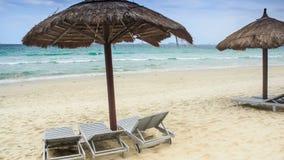 Μόνιππο -μόνιππο-longues ομπρελών παραλιών καλάμων στην παραλία θάλασσας απόθεμα βίντεο