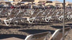 Μόνιππο longues στην παραλία φιλμ μικρού μήκους