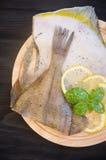 Μόνος βασιλικός λεμονιών ακατέργαστων ψαριών στοκ φωτογραφία με δικαίωμα ελεύθερης χρήσης