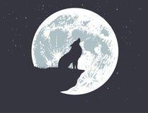 Μόνος λύκος που ουρλιάζει στη πανσέληνο Στοκ Εικόνες