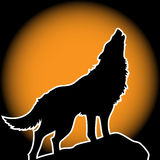 μόνος λύκος Στοκ Εικόνες