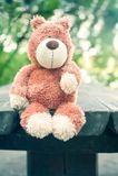 Μόνος ξεχασμένος teddy αντέχει το παιχνίδι θλίψη Στοκ φωτογραφία με δικαίωμα ελεύθερης χρήσης