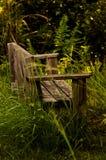 Μόνος πάγκος πάρκων στη φύση Στοκ Εικόνες