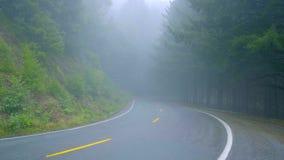 Μόνος δρόμος στην υδρονέφωση που οδηγεί μέσω του εθνικού πάρκου Redwoods φιλμ μικρού μήκους
