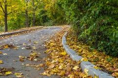 Μόνος δρόμος φθινοπώρου Στοκ Εικόνες