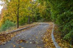 Μόνος δρόμος φθινοπώρου Στοκ εικόνα με δικαίωμα ελεύθερης χρήσης