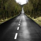 μόνος δρόμος Στοκ Εικόνα