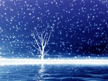 μόνο δέντρο χιονιού Στοκ φωτογραφία με δικαίωμα ελεύθερης χρήσης