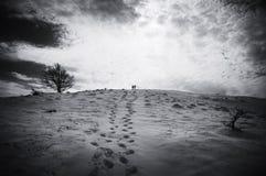 Μόνο από κοινού Χειμερινές μνήμες Στοκ εικόνα με δικαίωμα ελεύθερης χρήσης