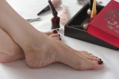 Μόνο γίνοντα pedicure Όμορφα θηλυκά πόδια με τη στιλβωτική ουσία καρφιών χρώματος κρασιού στο άσπρο υπόβαθρο στοκ εικόνα