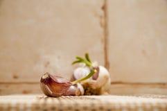 Μόνο γαρίφαλο του σκόρδου στο πρώτο πλάνο με το κεφάλι σκόρδου Στοκ Φωτογραφίες
