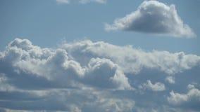 Μόνο θερινός μπλε ουρανός με τα δυναμικά μεταμορφικά άσπρος-γκρίζα σύννεφα Πλήρες μήκος σε πόδηα χρονικού σφάλματος HD απόθεμα βίντεο