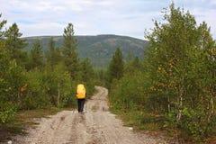 Μόνο κορίτσι που περπατά σε έναν δασικό δρόμο στα βουνά Στοκ εικόνα με δικαίωμα ελεύθερης χρήσης
