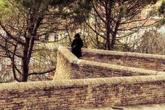 Μόνο κορίτσι που προσέχει μια άποψη Στοκ φωτογραφία με δικαίωμα ελεύθερης χρήσης