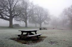 Μόνο πάρκο του Norfolk Diss το χειμώνα Στοκ Εικόνα