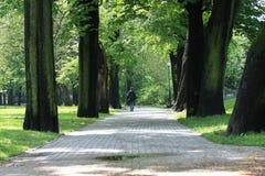 μόνο περπάτημα πάρκων Στοκ Φωτογραφία