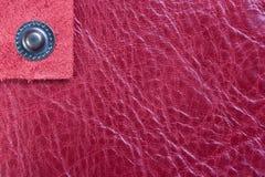 μόνο ροζ δέρματος κουμπιών Στοκ Φωτογραφίες