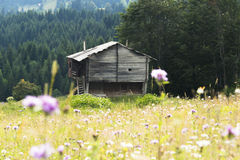 Μόνο σπίτι και όμορφη άποψη Στοκ εικόνες με δικαίωμα ελεύθερης χρήσης