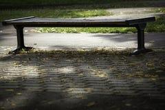 μόνο φύλλα Στοκ φωτογραφίες με δικαίωμα ελεύθερης χρήσης