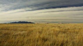 Μόνο cloudiness στοκ φωτογραφία με δικαίωμα ελεύθερης χρήσης