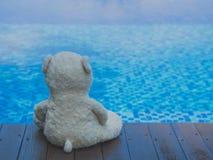 Μόνο Teddy αντέχει κοντά στην πισίνα Στοκ φωτογραφία με δικαίωμα ελεύθερης χρήσης