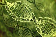 Μόρια DNA Στοκ εικόνα με δικαίωμα ελεύθερης χρήσης