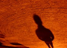 μόριο σύστασης σκιών Στοκ Φωτογραφίες