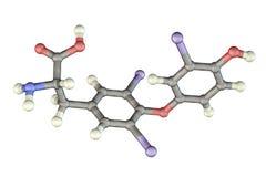 Μόριο του triiodothyronine, μια ορμόνη θυροειδή απεικόνιση αποθεμάτων