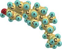 Μόριο Cholesterole στο άσπρο υπόβαθρο Στοκ εικόνα με δικαίωμα ελεύθερης χρήσης
