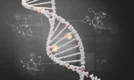 Μόριο DNA Στοκ Φωτογραφίες