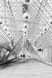Μόσχα, ένα πικρό πάρκο, γέφυρα του ST Andrew ` s, καλοκαίρι 2017 Στοκ Εικόνα
