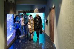 Μόσχα, Ρωσία - 10 Δεκεμβρίου 2016 Άνθρωποι γύρω από το ενυδρείο στο oceanarium πόλεων κρόκων σε Krasnogorsk Στοκ εικόνες με δικαίωμα ελεύθερης χρήσης