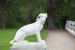 Μόσχα Ρωσία Μουσείο-κτήμα Arkhangelskoye Πέτρινο σκυλί Στοκ φωτογραφία με δικαίωμα ελεύθερης χρήσης