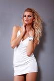 Μόδα περιοδικών Θηλυκό μοντέλο Στοκ φωτογραφία με δικαίωμα ελεύθερης χρήσης