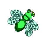 Μύγα ένα έντομο με τα φτερά Στοκ Εικόνες