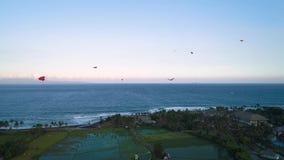 Μύγα ικτίνων στην ωκεάνια ακτή κοντά στα πεζούλια ρυζιού το βράδυ απόθεμα βίντεο