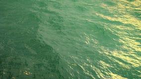 Μύγα πέρα από την πράσινη ωκεάνια επιφάνεια σε σε αργή κίνηση, loopable διανυσματική απεικόνιση