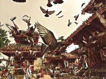 Μύγα περιστεριών πέρα από την παλαιά πλατεία της πόλης Κοπάδι περιστεριών που πετά επάνω την εκλεκτής ποιότητας ψηφιακή απεικόνισ Στοκ Εικόνες