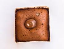 Μύγα στο σκοτεινό κέικ σοκολάτας Στοκ Εικόνες