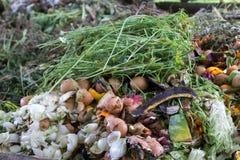 Μύγες στα απόβλητα κουζινών - συστατικά λιπάσματος Στοκ Εικόνα