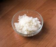 Μύκητας - zooglea «ινδικό θαλάσσιο ρύζι» στοκ εικόνα με δικαίωμα ελεύθερης χρήσης